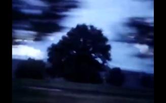 stan-brakhages-anticipation-of-the-night-6